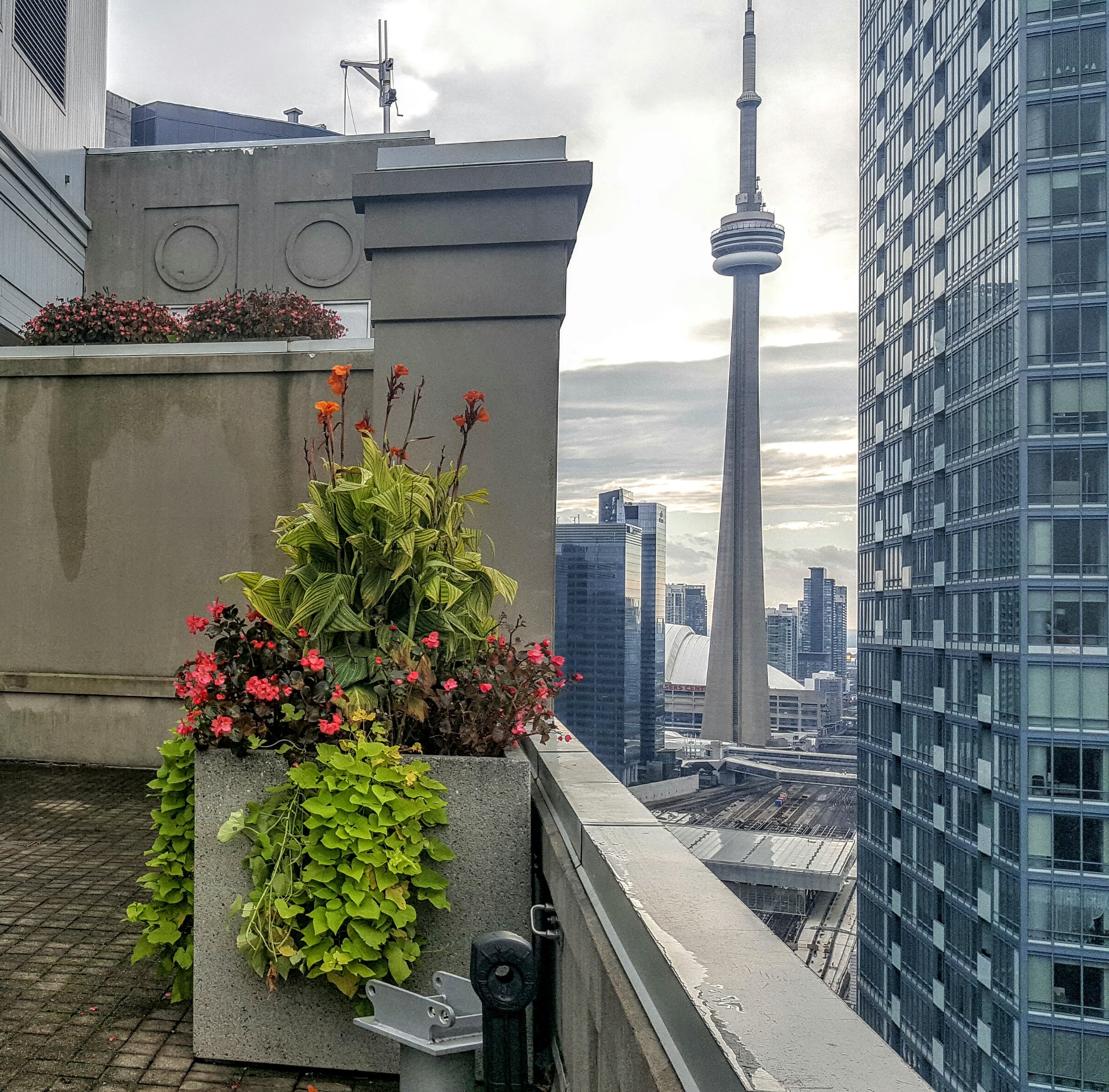 CN Tower Ranked One Of The Most Popular Landmarks In The World